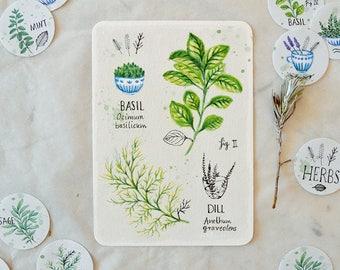 Basil & Dill - Card