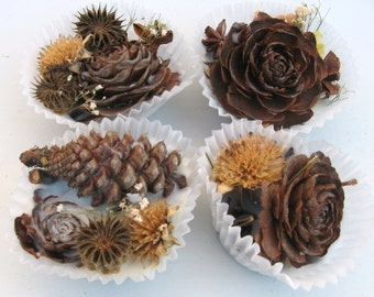 Pinecone Fire Starters - Set of 6 - Holiday Gift Place Pit Cinnamon Scented pine cone firestarter