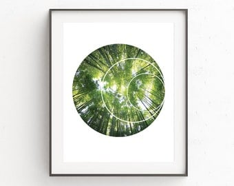 Forest Wall Print, Geometric Prints, Photo Trees, Printable Wall Art, Photography Trees, Instant Download, Forest Prints, Forest Print