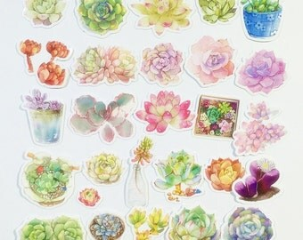 Little Succulent Plants #1 (33 pcs) // N18 // Die Cut Stickers // Planners //  Laptop Stickers  // Scrapbooking Essentials