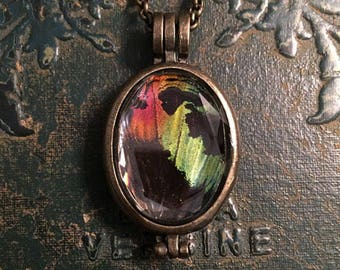 Sunset moth wing necklace // taxidermy necklace // gothic necklace // butterfly necklace // oddity necklace