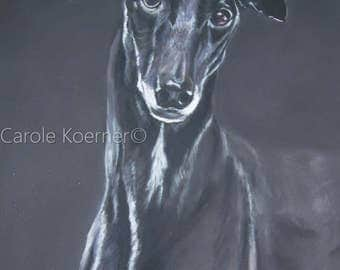 Greyhound pet portrait in soft pastels