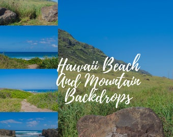 Hawaii Beach and Mountain Digital Backdrop Background