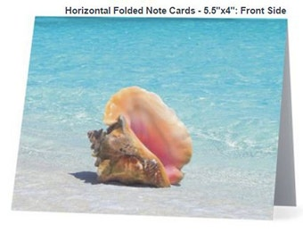 Conch Shell Beach Theme Note Card-Box of 5, Blank inside with white envelope