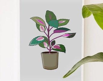 Plant Series 2, plant, green, illustration, digital, art print