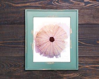 Watercolor Sea Urchin Print
