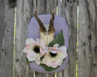 Roe Deer Antler Mount with Silk Flowers