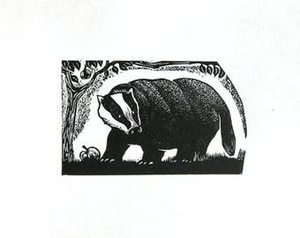 Badger print, Apple Bandit, black and white print, wood engraving, animal print
