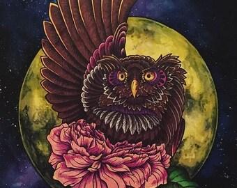 Owl or Alien