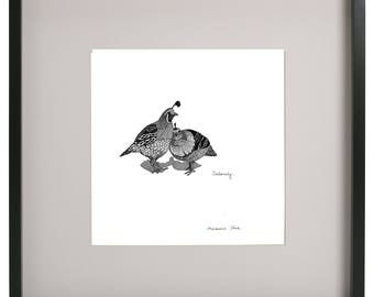 Codornices (Chilean Bird) illustration, wall art, black and white, drawing, home decor