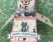 Happy Birthday Box Card with Cat Theme