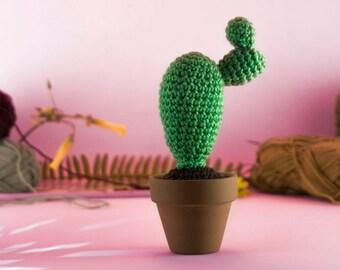 Crochet Cactus Amigurumi - Christmas edition