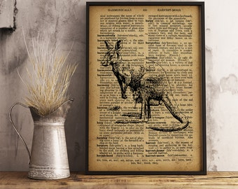 Kangaroo Print Australian Animal Poster Dictionary Art Print, Kangaroo Vintage illustration wall art, Animal Art Poster, Kangaroo (A12)