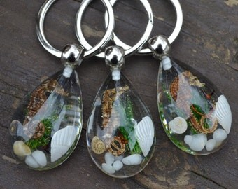 Real Seahorse Keychain