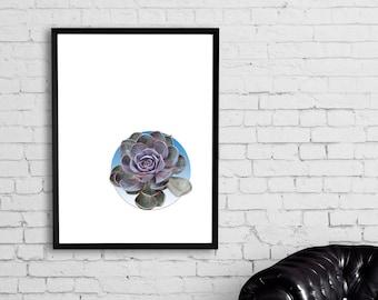 Digital Succulent Print Instant, Digital Wall Art Print, Poster, Urban, Eco art, SUCCULENT ON BLUE