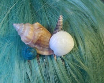 Multicolored Seashell Hair Comb