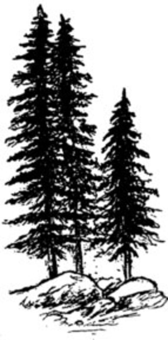 Jumbo Fir Trees 4 Tall X 2 Wide 1 Pc Sut