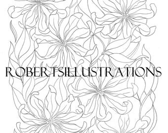 5 hand Drawn Illustrations from the colouring book La Belle Fleur