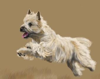 Canvas Print - Cairn Terrier