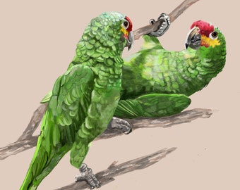 Canvas Print - Parrots in Green