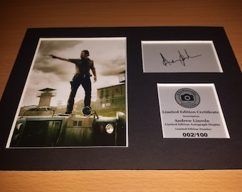 The Walking Dead - Andrew Lincoln - Rick Grimes - Signed Autograph Display - Fully Mounted and Ready To Be Framed