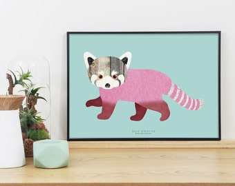 Lesser Panda Graphic Print (Mint)