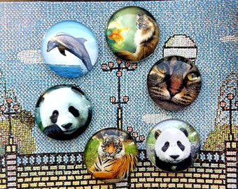 "Magnetic needle minder  ""Animals"" -  Glass cabochon Needle Keeper Magnetic -  Panda - Tiger -  Cat -  Dolphin - Size  1 inch (2.5 cm)"
