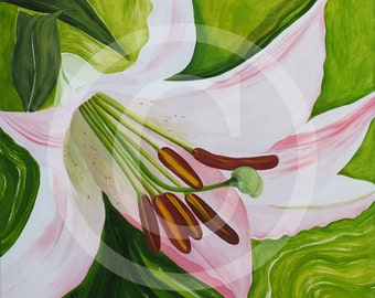 Lily, print on canvas, 80 x 80 cm