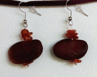 Natural Earrings: bean and amber