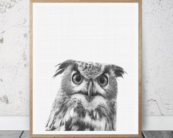 Owl Art, Owl Wall Print, Owl Wall Decor, Owl Printable Art, Black and White Print, Bird Prints, Owl Poster, Woodlands Owl Print, Owl Photo