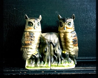 Vintage Owl Bookends | Elbro Hand Decorated | Ceramic Bookends | Owls And Tree Trunk