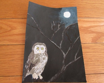 Gray Owl and moonlight