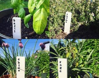 Garden Marker / Plant Stake