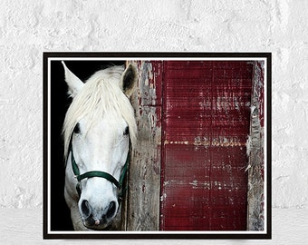 horse print, horse art, horse decor, printable art, horse wall art, horse photography, horse photo, horse poster, digital print, instant