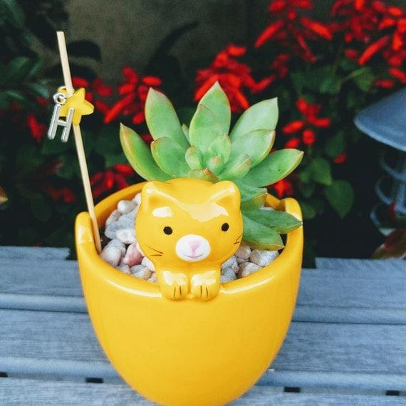 Yellow Ceramic Cat Succulent Planter
