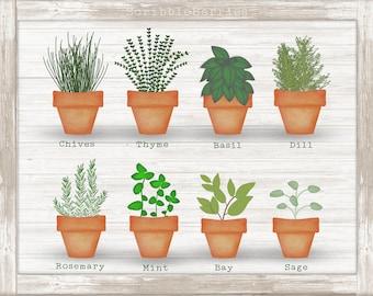 Herbs Clip Art, Garden Clip Art, Spring Clip Art, Mint Clip Art, Printables, Thyme Clip Art, Sage Clip Art, Basil Clip Art, Herb Clip Art,