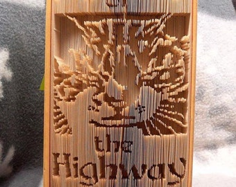 My Way or Highway Cat Book Folding Pattern