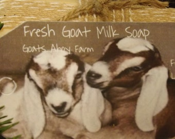 Litsea Cubeba &  Lavender Essential Oil Fresh Goats Milk Soap w/ Shea Butter