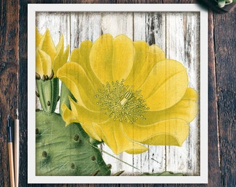 Cactus Wall Art Printable, Rustic Wall Decor Beach, Yellow Flower, Large Square Home Decor, Living Room Art, Instant Download (#3968c)