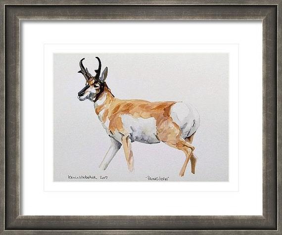 "PRONGHORN - Origninal 6"" x 8"" Watercolor Painting"