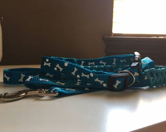 matching dog collar and leash set