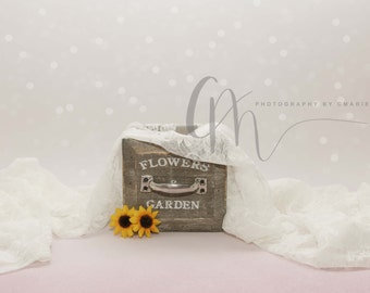 Flower box digital backdrop