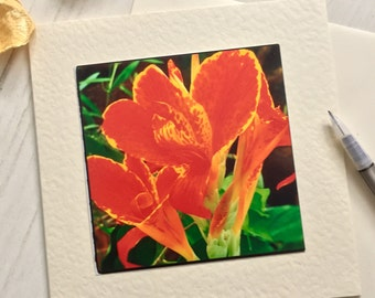 Exotic red flower card, any occasion, greetings card, all occasion, floral card, nature card, photo card, original card, (AO6)