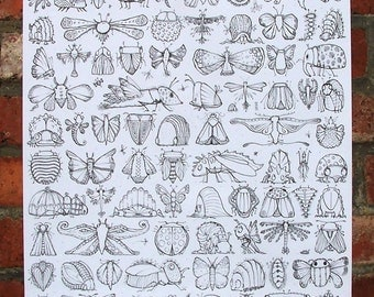 Fluttering Scuttle-bugs A2 size 'Colour-in' poster.