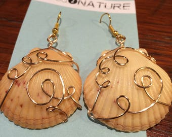 Wire Wrapped Shell Earrings