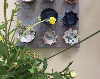 Shell Bowl / Mini Bowl