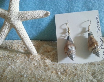 Wire Wrapped Conch Shell Earrings