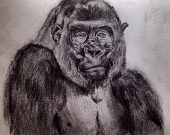 Animal drawings - made to order