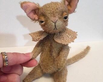 Little cat Lipsey