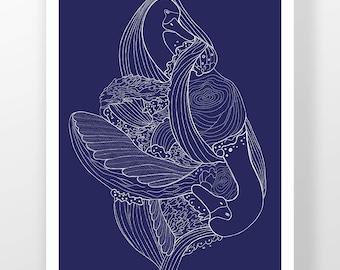 Birrarung Swan Illustration